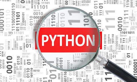 Magnifying glass Magnifies the word python